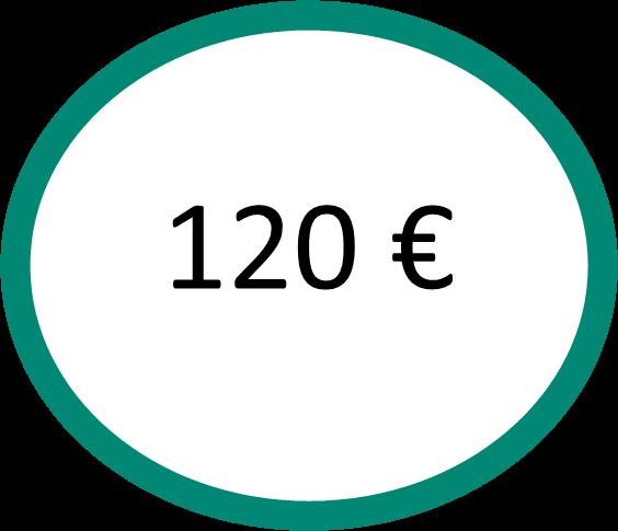 EspaceLe13 logo 120 euros